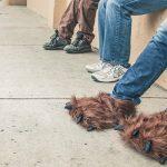 Làm sạch mùi hôi chân do đi giày với 8 mẹo đơn giản